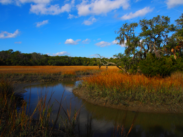 TIdal River on Edisto Island, South Carolina