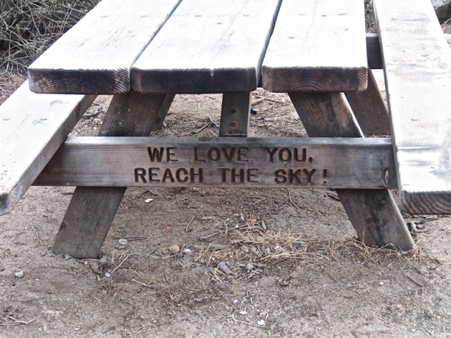 Inspiration From A Picnic Table