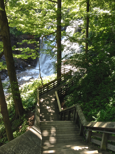 Boardwalk and Stairs leading to the falls.