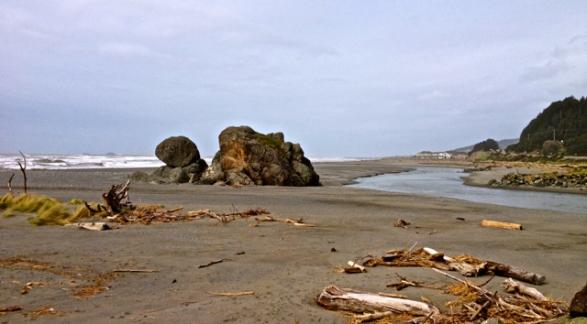 Turtle Rock2